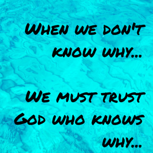 When we don't know why...We must trust God who know why...